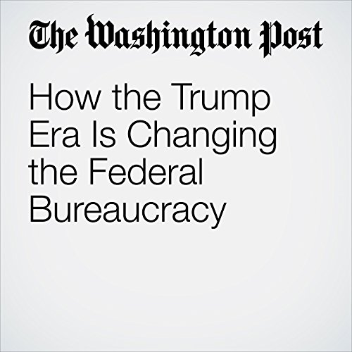 How the Trump Era Is Changing the Federal Bureaucracy copertina