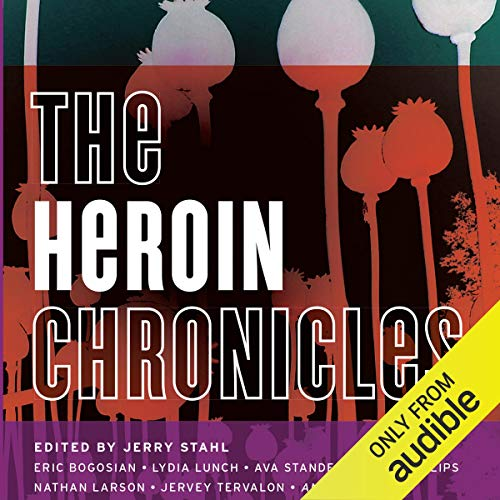 Page de couverture de The Heroin Chronicles