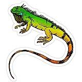 Vinyl Sticker for Cars, Trucks, Water Bottle, Fridge, Laptops Green Iguana Lizard Reptile Animal Stickers (3 Pcs/Pack)