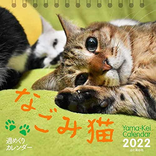【Amazon.co.jp 限定】カレンダー2022 週めくりカレンダー なごみ猫 (卓上/壁掛け・リング)【特典データ:スマホ壁紙画像】 (ヤマケイカレンダー2022)