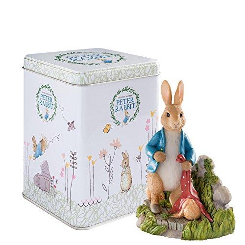 Beatrix Potter Peter Rabbit en Jardin 30e Anniversaire avec Petite boîte en métal