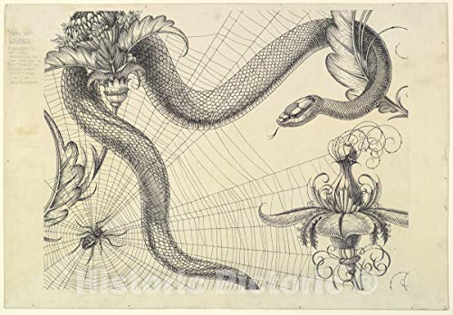 Historic Pictoric Art Print : Henry Weston Keen - Spider, Web, Snake and Flowers, The Duchess of Malfi and The White Devil (endpaper Design) : Vintage Wall Décor : 24in x 16in