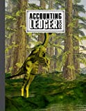 """Accounting Ledger Book: Dilong Dinosaurs Cover 