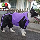 Lovelonglong Border Collie Dog Hooded Raincoat, Collie Rain Jacket Poncho Waterproof Clothes with Hood Breathable 4 Feet Four Legs Rain Coats for Border Collies Large Dogs Purple L-M+