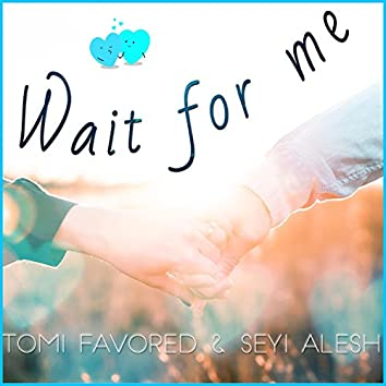 Wait for Me (feat. Seyi Alesh)