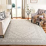 Safavieh Adirondack Collection ADR108B Oriental Medallion Non-Shedding Stain Resistant Living Room Bedroom Area Rug, 6' x 9', Ivory / Silver