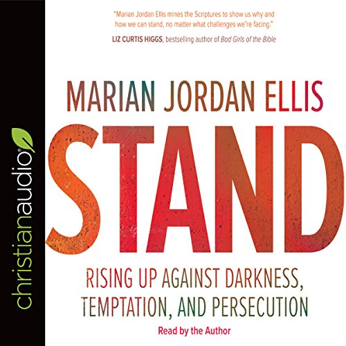 Stand audiobook cover art