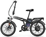 Bicicletas Eléctricas, E-Bici de 20 pulgadas Neumáticos bicicleta plegable eléctrica, 48V 8Ah batería de litio 250W vatios Motor eléctrico de la bici por adultos de la Ciudad de trayecto, freno de dis
