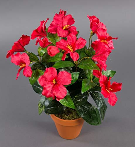 Seidenblumen Roß Hibiskus 40cm rot im Topf ZF künstliche Pflanzen künstlicher Eibisch Kunstblumen Kunstpflanzen