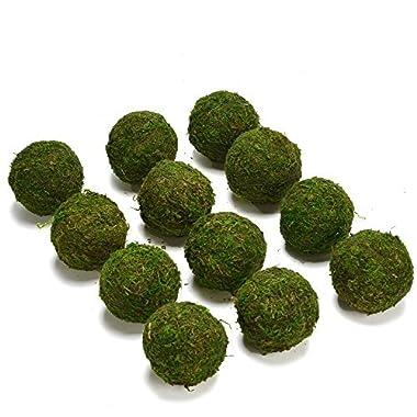 Byher Natural Green Moss Decorative Ball,Handmade (2 -set of 12)