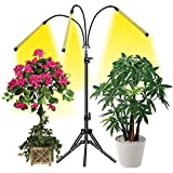 Grow Light, LED Grow Light for Indoor Plants 60W Tri-Head Full Spectrum Grow Lights with Tripod Stand Adjustable 15-47 inch 3 Modes Timer for Indoor Plants Growth 3 Lamps