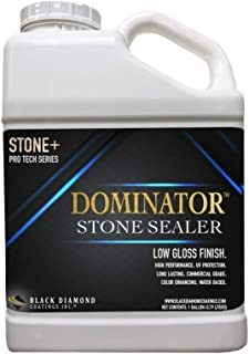 1 Gallon DOMINATOR Stone+, Low Gloss Stone Sealer and Clay Brick Sealer (Wet Look), Commercial Grade, Water Based, Color Enhancing, Easy Application