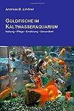 *Goldfische im Kaltwasseraquarium