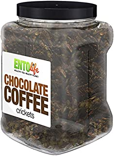 Order in Bulk: One Pound of Cleaned Flavored Crickets (Chocolate Coffee)