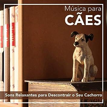 Música para Cães: Sons Relaxantes para Descontrair o Seu Cachorro
