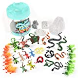 Sunny Days Entertainment Reptile Figure Play Bucket – 43 Assorted Lizards and Educational Accessories Toy Play Set for Kids   Plastic Animal Figures with Storage Container, Multicolor