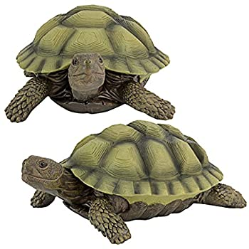 Best tranquil turtle target Reviews
