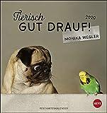 Tierisch gut drauf Postkartenkalender. Postkartenkalender 2020. Monatskalendarium. Spiralbindung. Format 16 x 17 cm