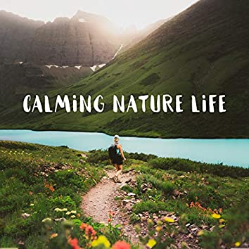 Calming Nature Life: Songs of Forest, Relaxing Time Out in Nature, Ocean Bliss, Peaceful Water