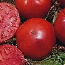 Amazon.es: semilla de tomate ecologico