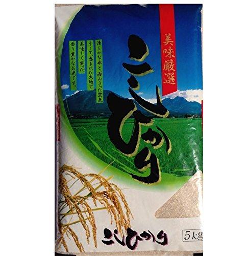 令和2年産 玄米 こしひかり 10kg 千葉県産