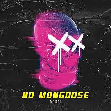 No Mongoose