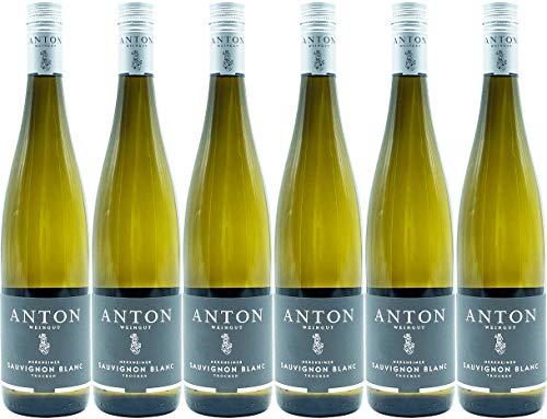 Anton Herxheimer Sauvignon Blanc 2020 Trocken (6 x 0.75 l)