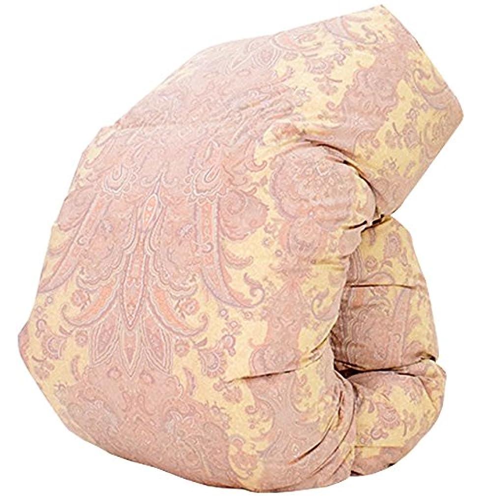 それにもかかわらず叫び声世代羽毛布団 西川 ダウン 85% 増量 1.8kg DP330 日本製 抗菌防臭 花粉フリー AI979 (ダブル:190×210cm, ピンク)