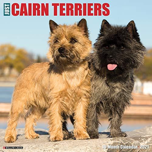 Just Cairn Terriers 2021 Wall Calendar (Dog Breed Calendar)