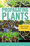 Propagating Plants: How to Creat New Plants: Gift Ideas for Holiday (English Edition)