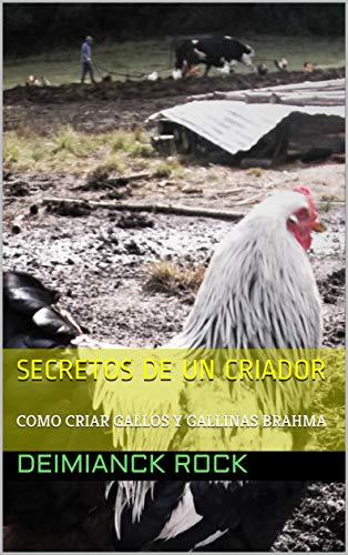 Secretos de un criador, como criar gallos y gallinas Brahma: como criar gallos y gallinas Brahma