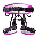 freneci Arnés de Seguridad de Escalada, Cinturones de Cintura para niños para Hombres y Mujeres, Medio Cuerpo sólido Profesional para - Rosa