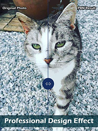 GAILEAF Personalisiertes individuelles Malen nach Zahlen für Erwachsene, Malsets für Haustiere und Porträts, Geschenke -Machen Sie Ihre eigene Foto-Zeichnungsfarbe und Pinsel (Kein Rahmen 40x60cm)
