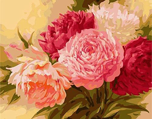 Pintura digital DIY Pintura en lienzo Decoración del hogar Niños adultos Pintura acrílica Obras de pintura Arte de la pared Pintura Regalo-Hermosas flores de colores 40x50cm