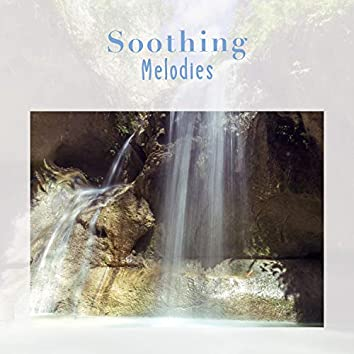 2020 Soothing Healthy Living Melodies