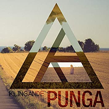 Punga