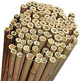 Ferritalia Lot de 25cannes en bambou pour tuteurer les plantes d'un potager et autres utilisations, 210cm