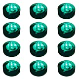 Lumabase 69012 12 Count Submersible LED Lights, Teal