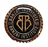 Main Street 24/7 Buckaroo Banzai Movie Banzai Institute 1in Diameter Metal/Enamel Logo Pin