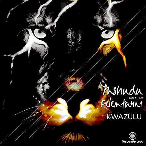 Mshudu feat. Felemtwini