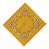 Andouy Bandana Kopftuch Halstuch Paisley Muster Einstecktücher Handgelenk Multifunktionstuch für Damen und Herren Verschiedene Farben(55X55CM.E)