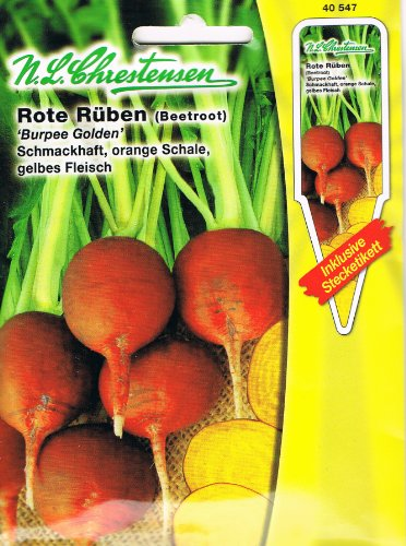 Rote Rüben ' Burpees Golden' orange Schale, gelbes Fleisch, schmackhaft ( mit Stecketikett)