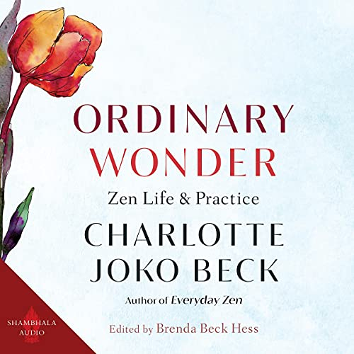 Ordinary Wonder cover art