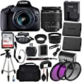 Canon EOS 2000D (Rebel T7) Digital SLR Camera with 18-55mm DC III Lens Kit (International Model) Professional Accessory Bundle Includes: SanDisk Ultra 64GB Memory Card + 50?? Tripod + Filters and More