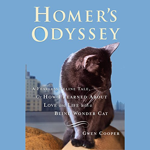 Homer's Odyssey audiobook cover art