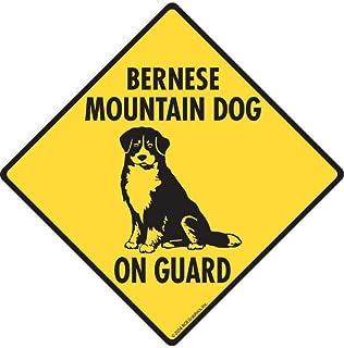 Lotusworld - Señal de Advertencia Señal de Perro Bernese Mountain Dog On Guard de Aluminio de 12 x 12 Pulgadas