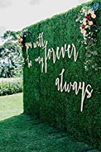 8x8 Feet Artificial Boxwood Hedge Backdrop Wall, Greenery Decor Wall for Party Decor/Event Wall/Birthday/Wedding/Photo Studio Background Wall (8ftx8ft)