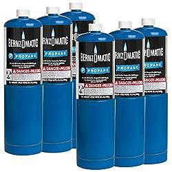 Standard Propane Fuel Cylinder – Pack of 6
