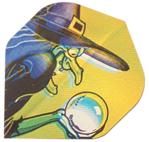 3 Stück Hexe in 2-D Hologramm Flight 802905