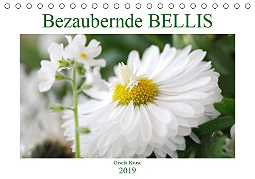 Bezaubernde Bellis (Tischkalender 2019 DIN A5 quer): Bellis, Maßliebchen, Tausendschön - dieser Kalender huldigt dem Kulturgänseblümchen (Monatskalender, 14 Seiten ) (CALVENDO Natur)